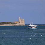 Tatihou - Bateau amphibie 03-08-11©D.Daguier-CG50-077
