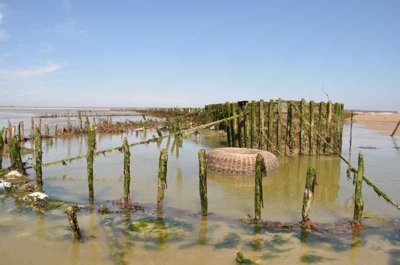 Pecherie la maillard hauteville sur mer coutances tourisme